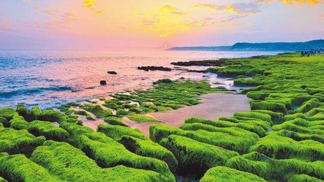 端午悠遊北海岸!賞老梅綠石槽、富基魚市嚐海味