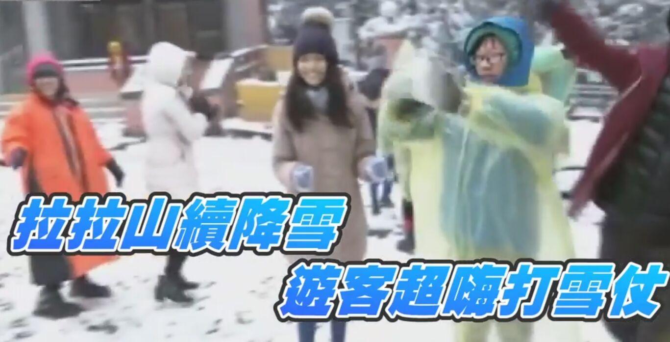 白雪覆蓋拉拉山茶園 茶農樂透:剛好殺菌